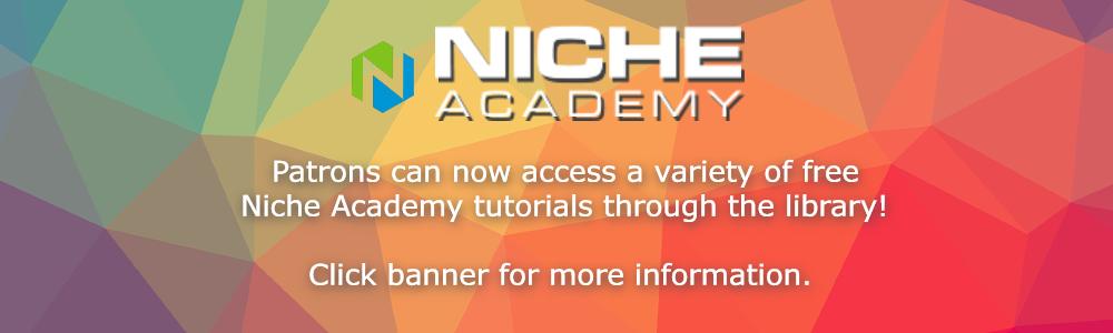 nicheacademy banner